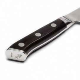 Hokiyama-Tosa-Ichi Tsuchime Bright-nůž Gyuto 210 mm